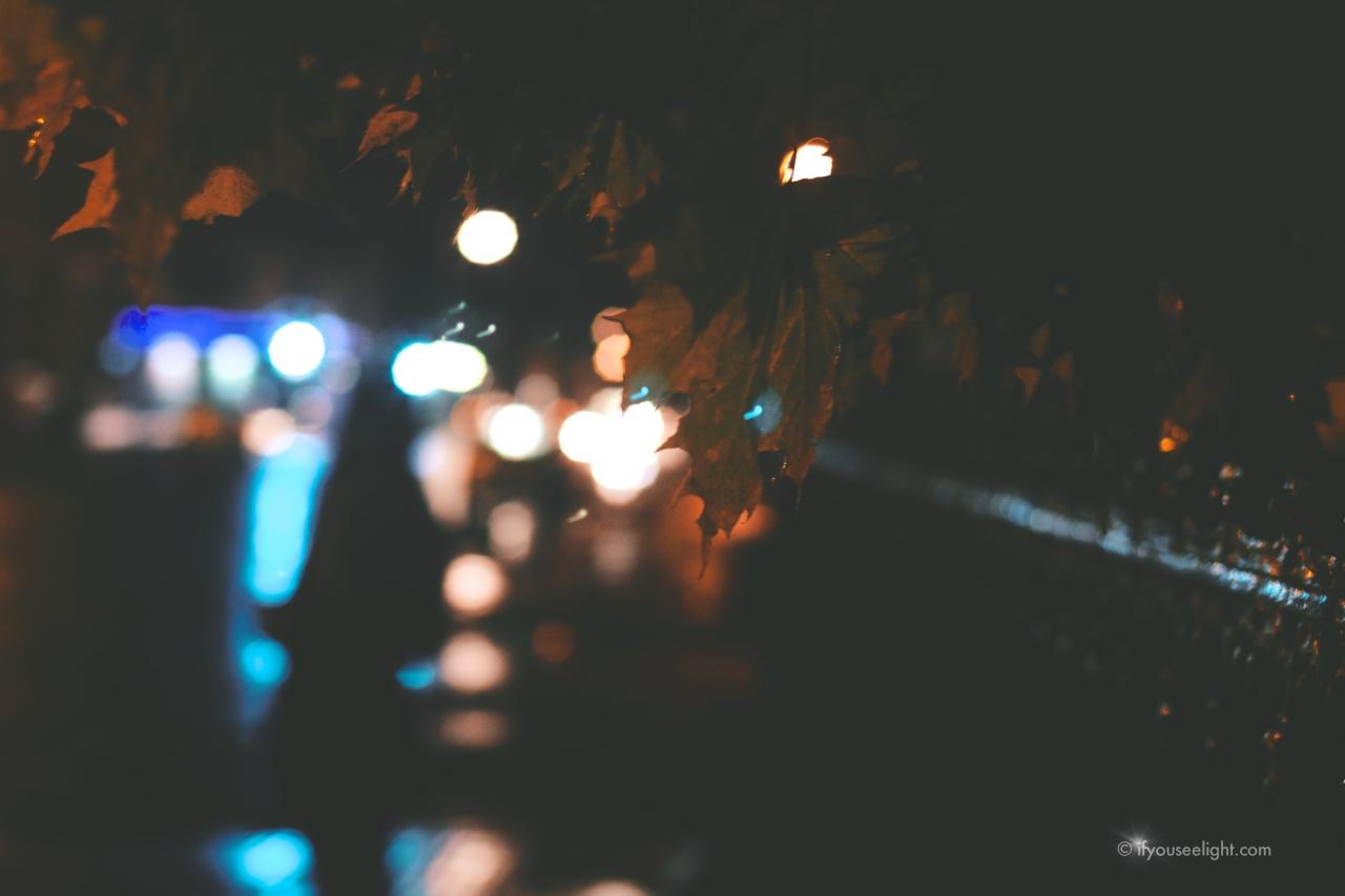 Headlights on theparade